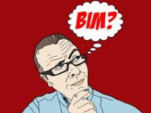 1749528_think-bim-cAngela-Salt